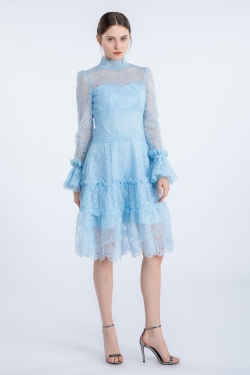 Gossamer lace high collar dress