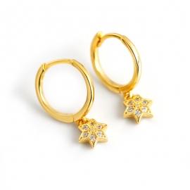 Golden diamond hexagram s925 sterling silver earrings earrings earrings female hexagon star earrings